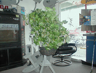 DishCAMO - Turn your Satellite into a Plant !!!!